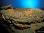 Grotte à JP